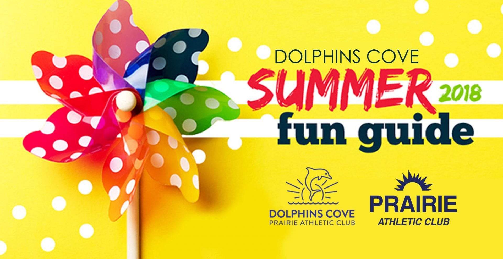 Dolphin's Cove Summer 2018