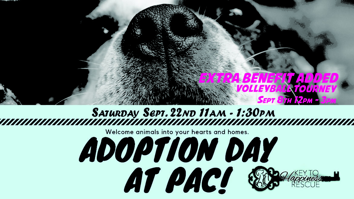 Prairie Athletic Club Pet Adoption Day