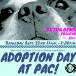Prairie Athletic Club Pet Adoption Day